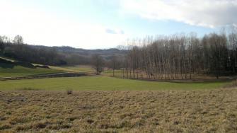 Panorama in località Cascine di Barengo - Comune di Mazzè