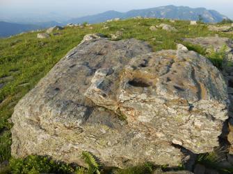 Le incisioni rupestri del Bric Lombatera e il Mombracco sullo sfondo