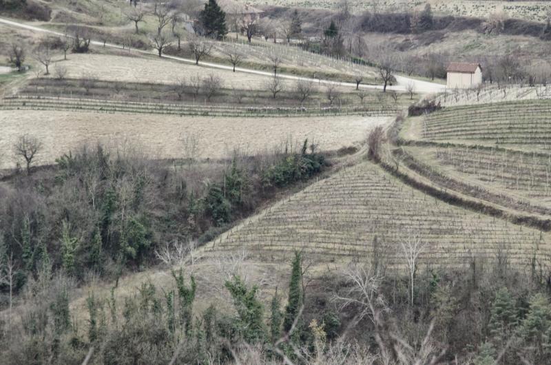 Colline, Passerano Marmorito