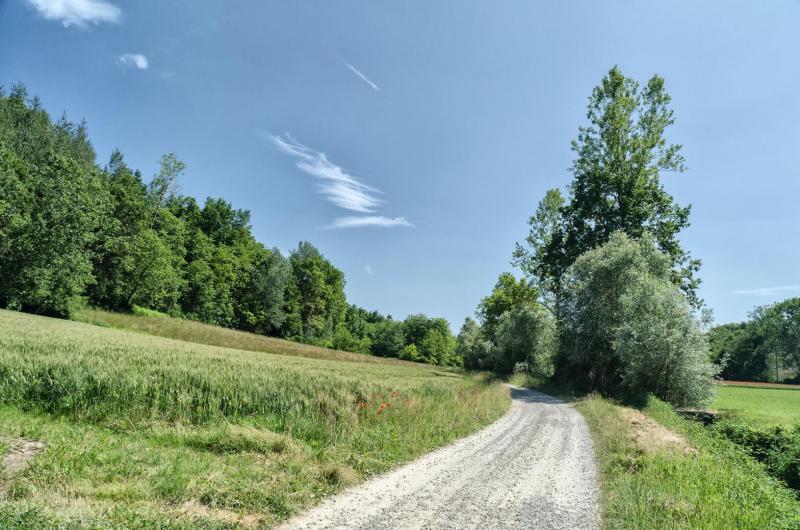 Cammino delle Colline Sacre
