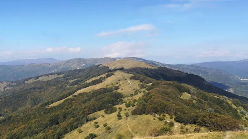 Monte Carmo